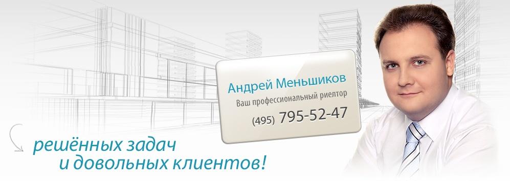 профессиональный риелтор Андрей Меньшиков